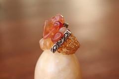 Anillo de gata (laseoradelosanillos) Tags: anillos