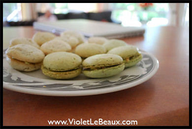 4458125811 8a83fe759d Easy Macaron Recipe   The Adventure Continues...