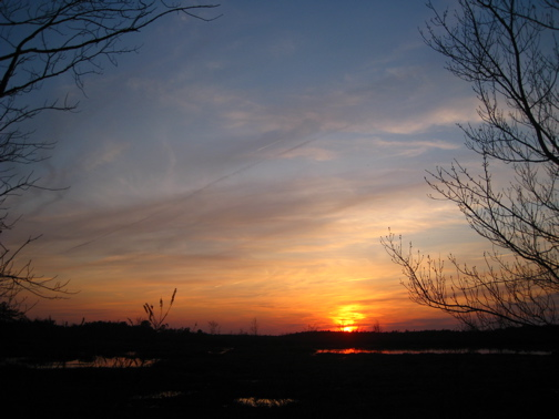 Whitesbog Sunset