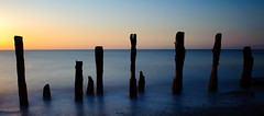 Sun Coming In From The Left (Esther Seijmonsbergen) Tags: uk longexposure england seascape water sunrise landscape scenery yorkshire northsea peninsula humber groynes spurnpoint spurnhead eastridingofyorkshire sooc estherseijmonsbergen wwwdigitalexposurephotographycom