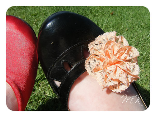 shoe clips 9