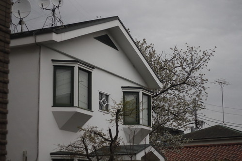 Ando-sensei's house