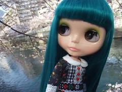Moving Blythe doll 2