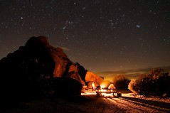 Camp at Joshua Tree II (Joshua Bury) Tags: camp sky night stars rocks warmth campfire sirius orion taurus canismajor pleiades joshuatreenationalpark winterconstellations