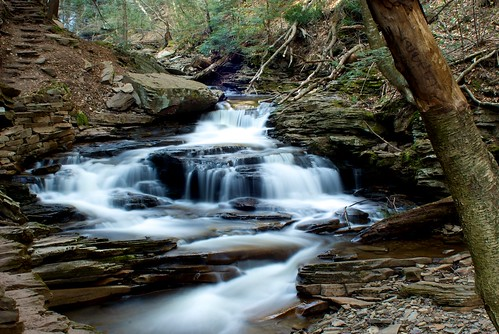Ricketts Glen - Seneca Falls