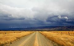 cloud chasing - ranfurly (rina sjardin-thompson photography) Tags: cloud rural rain clouds farming farmland road gravelroad ranfurly maniototo southisland weather nz nature newzealand agriculture rinasjardinthompson