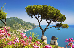 509891931 (Jacada Travel) Tags: amalfi amalficoast architecture beach blue campania coastline europe famousplace flower italianculture italy journey landscape landscaped mediterraneancountries mediterraneanculture mediterraneansea mountain mountainrange multicolored nature pinetree positano ravello salerno scenics sea singleflower sky south summer town tree unescoworldheritagesite village water watersedge