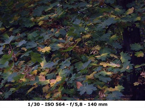 !Nikon 1000pj-test-1.30-ISO564-F5.8-MM140 copy