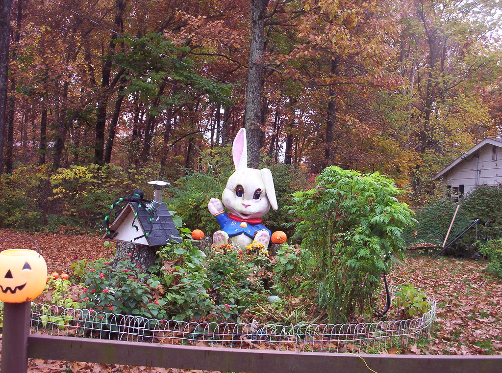 6 foot tall bunny