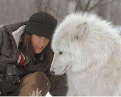 skylar and legend (skynymph one wild ride) Tags: sky wolf arctic skylar saskatchewan legend northernlights arcticwildlife whitewolf wolfgirl wolfcenter tundrawolf arcticwolf arcticwolves wolfwoman wolfsong wolfoutreach saskatchewanwolf skylarbreton canadawolfcenter wolfwhisperer