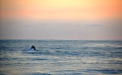 Inmensidad (arturotreminio) Tags: nikon sunsets elsalvador atardeceres playas lalibertad d40 nikcolorefexpro