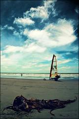 Free (bkiwik) Tags: newzealand christchurch sky seaweed beach nature digital canon freedom sand yacht free canterbury nz aotearoa 2009 mothernature landyacht newbrighton eos400d