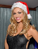 Rosanna Davison at the Assets Model Agency Christmas Party 2009 at Krystle Night Club