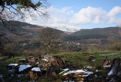 View near Llanelltyd
