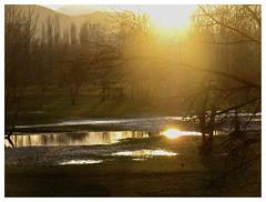 L'oro del Reno/3 (CalcioVolante) Tags: trees sunset italy reflection alberi river puddle italia tramonto mud flood fiume bologna reno piena riflesso fango iphotooriginal pozzanghera