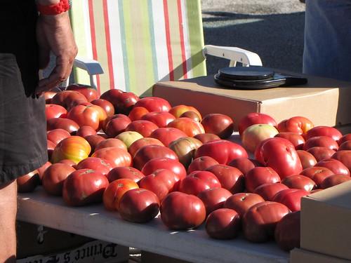 fl tomatoes