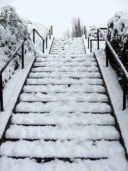 Steps to Snowhere! (lisaluvz) Tags: winter snow cold no steps more ugh mk lisaluvz
