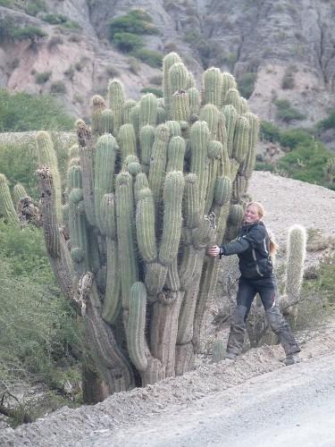 Christina und der Kaktus