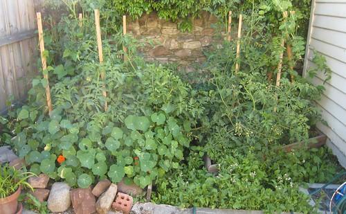 garden0