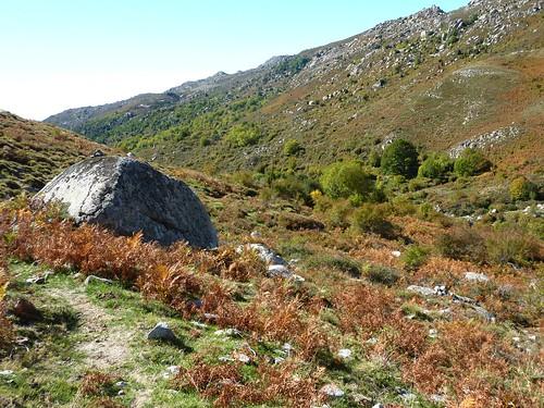Descente vers le ruisseau de San Petru : arrivée au sentier