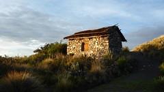 Cabaña (Cocal) Tags: peru island perú isla puno suasi