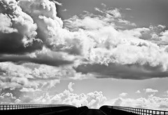Leaves and Kings (Thomas Hawk) Tags: california bridge bw usa clouds america unitedstates 10 unitedstatesofamerica eastbay antioch fav10 antiochbridge senatorjohnanejedlybridge natureshand johnanejedlybridge