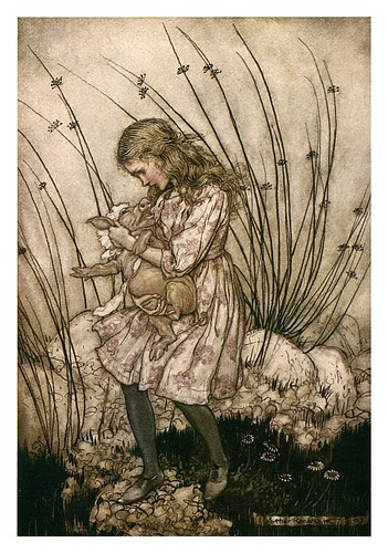 006-Pig and peeper-Alice's adventures in Wonderland-1907- Arthur Rackham