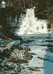 Rickett's Glen In Winter (+David+) Tags: frozen waterfall scan olympusom1 rickettsglen december1989