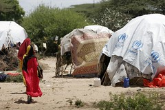 UNHCR News Story: Somalia: Life in Mogadishu (UNHCR) Tags: africa city camp news tents video women battle violence somali dailylife fighting emergency information protection logos assistance unhcr somalia visibility insecurity hornofafrica displacement newsstory idps clashes youtube mogadishu newarrivals displacedpeople forceddisplacement afgooye unrefugeeagency makeshiftcamp webstory13november2007 webstory25april2008
