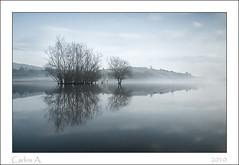 Trees in fog 2. (Carlos.A) Tags: agua arboles asturias niebla reflejos ostrellina