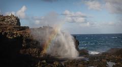 Nakalele Blowhole (tomdz) Tags: hawaii rainbow maui nakaleleblowhole