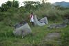 Broken Jars (Incito.Vacations - Ng Sebastian) Tags: ancientcivilization badavalley kalamba megalithofbadavalley