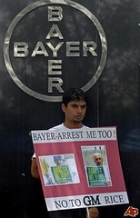 GMO Rice - Greenpeace protest in India against BAYER (DanVoglesong) Tags: india greenpeace copy bayer gmonothanks gmorice thefutureisgefree sansogmgmofree gmofreeagriculture gmofreeworld
