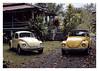 17_02_05_197p (2) (Quito 239) Tags: käfer volkswagen 1971volkswagen 1971volkswagensuperbeetle superbeetleconvertible vw bug vocho escarabajo puertorico haciendaigualdad volky