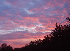 Sky blue pink