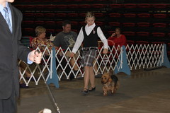 Dog show Rapid City 1st Junior