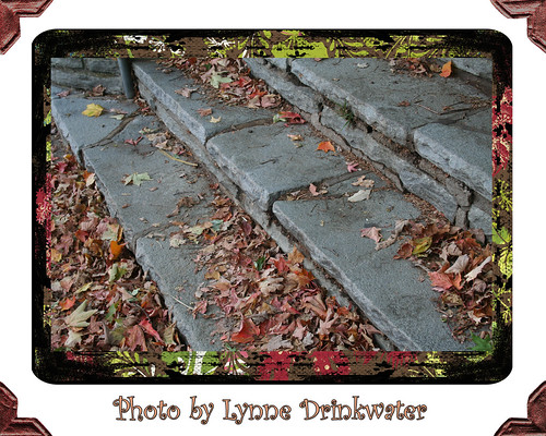 photo-by-lynne-drinkwater-steps