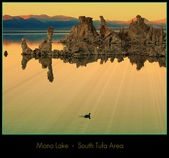Mono Lake (janetfo747 Year of the Horse!) Tags: california sunset orange lake water rock mono duck cone spires towers peak calcium explore monolake hwy395 knobs alkaline reflexions tufa turret soe picnik pinnacle refection carbonate southtufa hwy120 tufatowers flickrsilver topseven artistoftheyear flickrgold colorphotoaward the