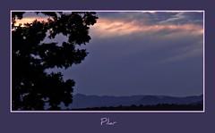 Tmido atardecer (peltodoris) Tags: sunset naturaleza valencia sunshine atardecer nubes ocaso