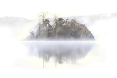 Misty Isle (angus clyne) Tags: wood morning white mist lake tree castle birds fog forest island dawn scotland frost time angus perthshire scottish calm loch isle clyne flikcr lochan clunie
