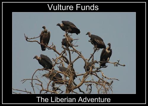 Multiple_vultures