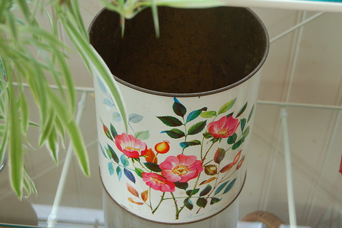 Rosty rose bucket