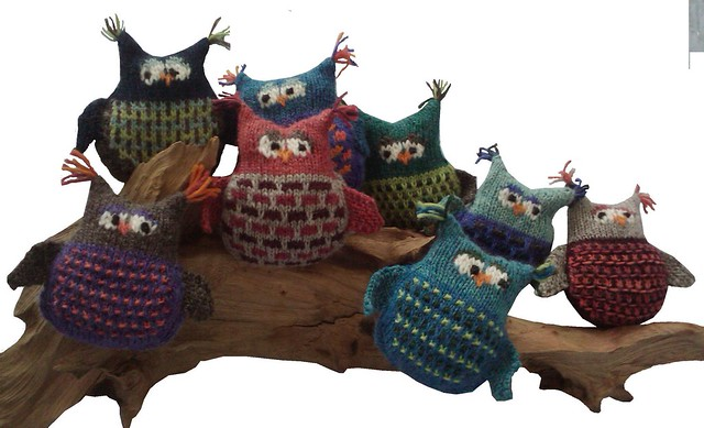 Gaggle of Owls