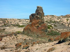 La côte entre la baie de Stagnolu et la Cala di Merlu : une curiosité du sentier