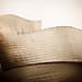 La ola - Museo Guggenheim Bilbao - The wave - Guggenheim Museum