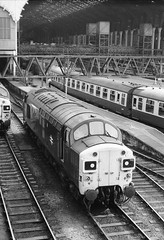 Liverpool Street Station London 3rd July 1977 (loose_grip_99) Tags: uk railroad england london station electric train blackwhite diesel noiretblanc railway trains railways britishrail 1976 liverpoolstreet trainshed ger mainline britishrailways lner class37 37026 stabling