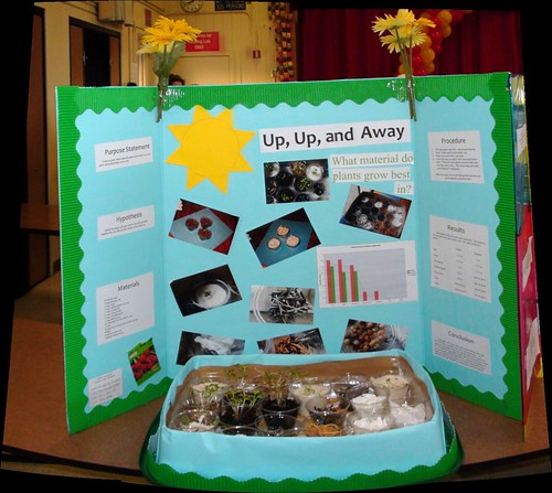 Science Fair Project Ideas For 5th Grade Science Fair Project Ideas For