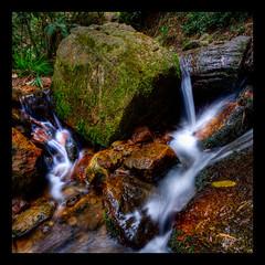 Quebrada la Vieja (mats.fjellner) Tags: longexposure musgo water moss agua rocks colombia bogot vatten rocas silky mossa quebrada rosales stenar bck quebradalavieja