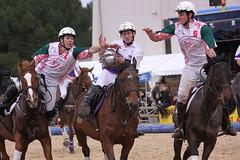 LCfoto_5005 (lcfoto) Tags: horse ball cheval elite passion pro luc avignon championnat horseball chevalpassion chamontin