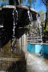 Alvaro Obregon_2572 (Omar Omar) Tags: water fountain mxico mexico agua mexicocity df eau fuente mexique coloniaroma distritofederal laroma mxicodf ciudaddemxico federaldistrict doriforo alvaroobregon  avenidaalvaroobregon coloniaromanorte policletodeargos avealvaroobregon avalvaroobregon alvaroobregonavenue mercadodearteroma
